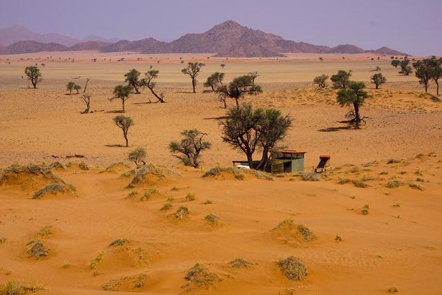 Campsite im NamibRand Nature Reserve Blick auf die Camp Site