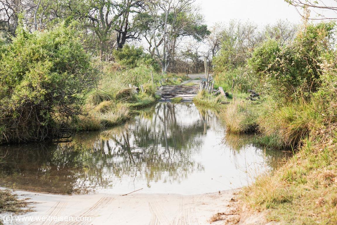 Thirth Bridge Moremi Game Reserve