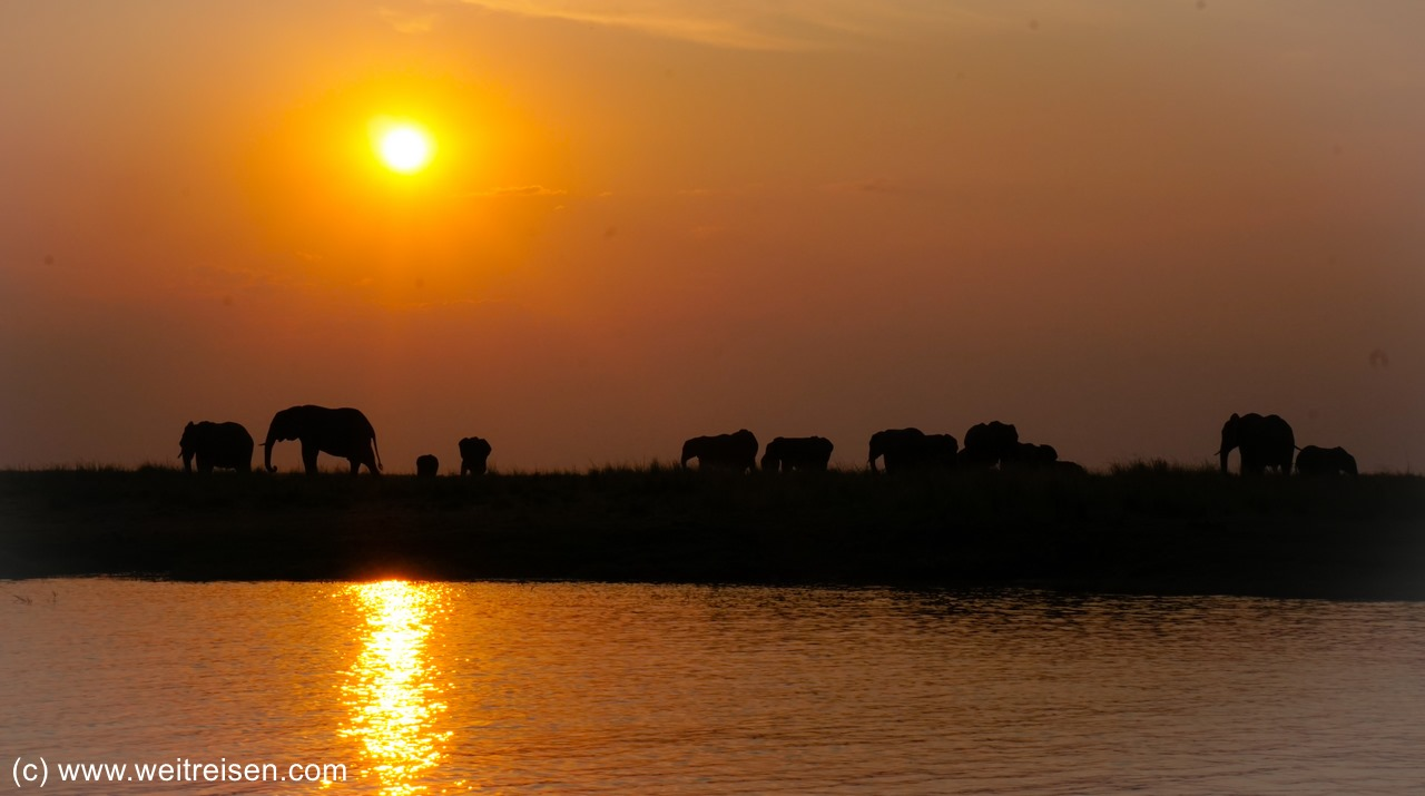 Sonnenuntergang am Chobe River im Chobe National Park