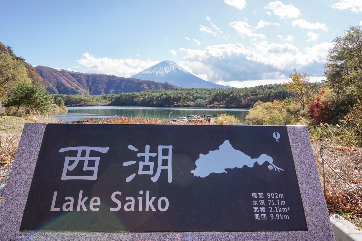 Lake Saiko, Fuiji