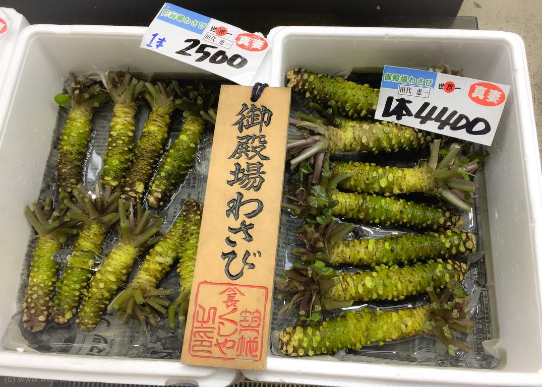 Tokio Fischmarkt, Thunfisch Auktion Tokio Fischmarkt