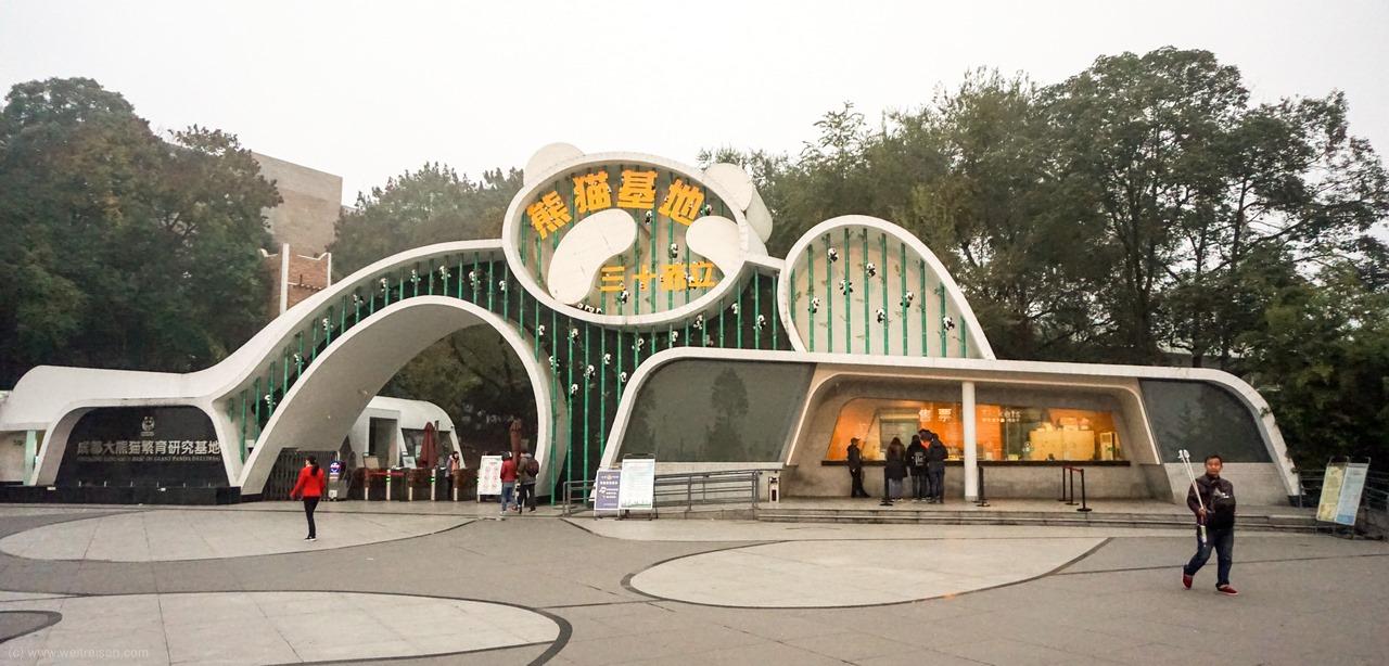 Chengdu Pandabären