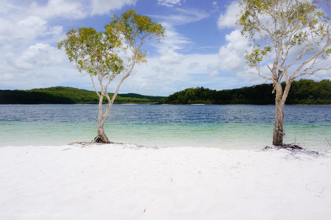 Fraser Island, Lake McKenzie